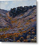 Hillside Sage Metal Print