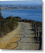 Hillside Trail Metal Print