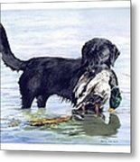 His First Catch Metal Print by Brenda Beck Fisher