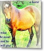 Care About A Horse And He Will Give You His Heart In Return  Metal Print