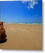His Own Private Beach  Metal Print
