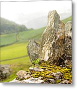 History And Nature. Wicklow. Ireland Metal Print
