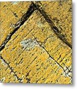 History Of Earth 3 Metal Print by Heiko Koehrer-Wagner
