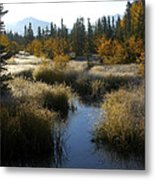 Hoar Frost And Stream Metal Print