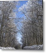 Hoar Frost On Campground Road Metal Print