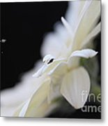Hold On To Hope Metal Print