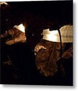 Holding On To The Light Metal Print