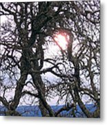 Holding On To The Sun Metal Print