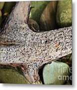 Holey Driftwood Metal Print