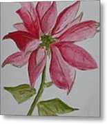 Holiday Flower Metal Print