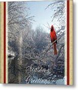 Holiday Season 2013 Metal Print by Teresa Schomig