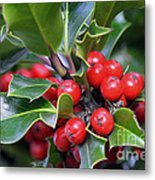 Holly Berries 2 Metal Print
