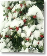Holly Tree With Snow Metal Print