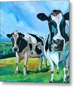 Holstein Amoogos Metal Print