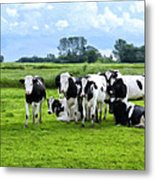 Holstein Heaven Metal Print