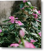 Home Flower Metal Print