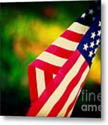 Home-land Metal Print