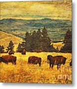 Home On The Range Metal Print by Lianne Schneider
