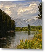 Homeground Waters Landscape Metal Print