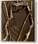 Homosycamorous Or We Evolved From Trees Metal Print