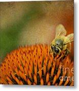 Honey Bee On Flower Metal Print by Dan Friend