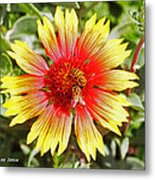 Honey Bees On Flower Metal Print
