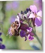 Honeybee On Purple Wall Flower Metal Print