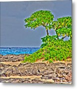 Honolulu Hi 7 Metal Print