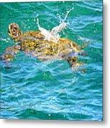 Honu Hawaiian Green Sea Turtle Metal Print