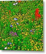 Hop Clover And Scarlet Paintbrush And Nodding Onion And Harebells Along Swiftcurrent Pass Trail-mt   Metal Print