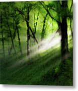 Hope Lights Eternal - A Tranquil Moments Landscape Metal Print