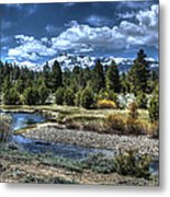 Hope Valley Wildlife Area 2 Metal Print