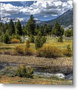 Hope Valley Wildlife Area Metal Print