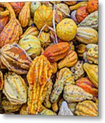 Hordes Of Gourds Metal Print