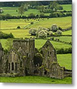Hore Abbey Ireland Metal Print by Dick Wood