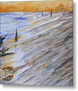 Horn Island Beach  And Sandpiper Reflection Metal Print