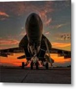 Hornet At Rest Metal Print by Dan Quam