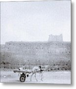 Horse And Cart Metal Print