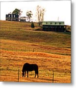 Horse And Farm By Jan Marvin Metal Print