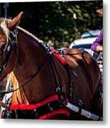 Horse And Rider Metal Print