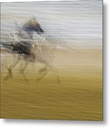 Horse And Sulkie Metal Print