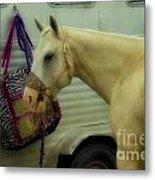 Horse Art 2 Metal Print