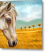 Horse At Yellow Paddy Field Metal Print