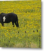 Horse  Birds  And Flowers   #8520 Metal Print