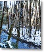 Horse Creek No. 2 Metal Print