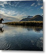 Horse Crossing A River, Iceland Metal Print