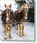Horse Drawn Sleigh Metal Print by Edward Fielding