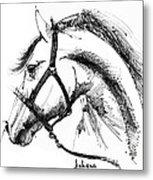 Horse Face Ink Sketch Drawing Metal Print