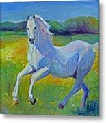 Horse Fancy Metal Print by Gwen Carroll