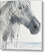Horse Head Drawing Metal Print